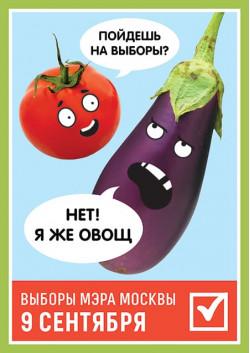 Плакат на выборы мэра Москвы ПЛ-1