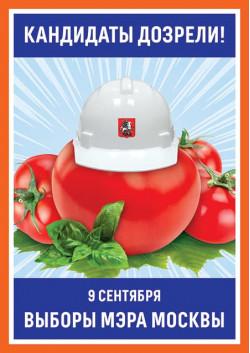 Плакат на выборы мэра Москвы ПЛ-3