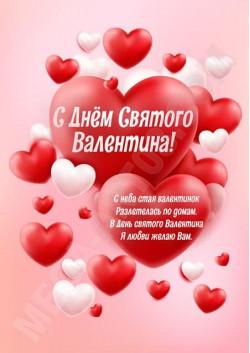 Постер на 14 февраля ПЛ-11