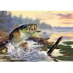 Серия постеров на День рыбака