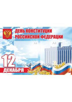 Стенгазета на День конституции РФ СГ-11
