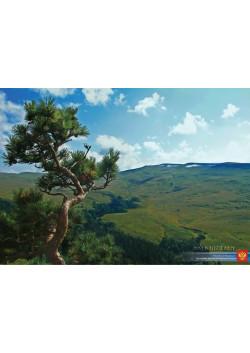 Постер Адыгея из серии Красота России ПЛ-116
