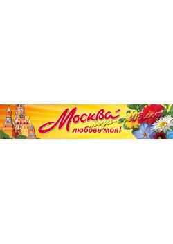 Баннер на день города Москвы БГ-1