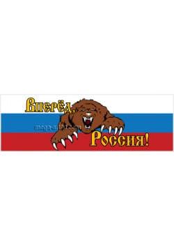 "Баннер ""Вперёд Россия"" БГ-1-2"