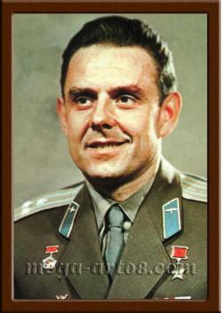 Портрет Комаров В.М. ПЛ-196-2