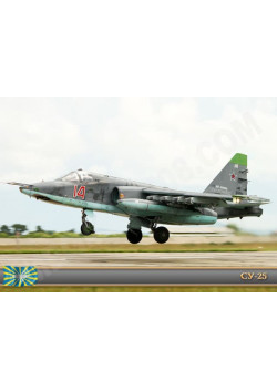 Постер СУ-25 ПЛ-130