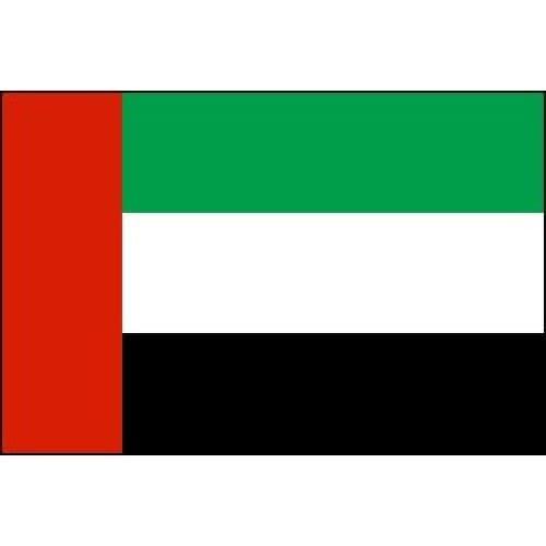 Флаг оаэ с какими странами закрыта граница россии